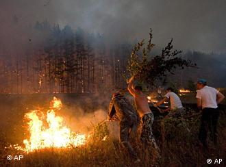 Local citizens attempt to extinguish a forest fire near the Russian village of Dolginino