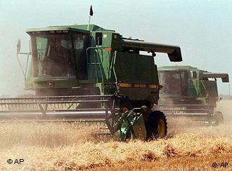 Уборка зерновых на Украине