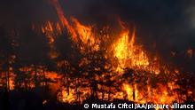 ANTALYA, TURKEY - JULY 28: A view of the forest fire that broke out in Manavgat district of Turkey's Antalya on July 28, 2021. Ground and air support works to extinguish the fire are underway. Mustafa Ciftci / Anadolu Agency