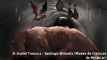 Impresión artística del Desmodus draculae en la madriguera del perezoso.