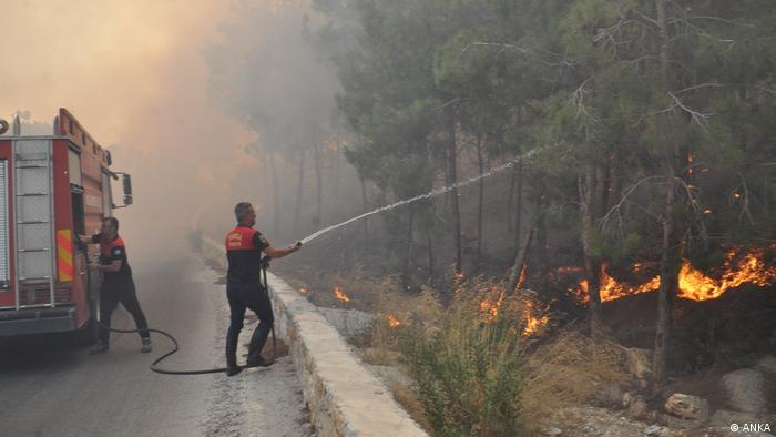 به گفته مقامهای ترکیه ۳۸ فروند هلیکوپتر آبپاش و چهار هزار مأمور آتشنشانی و امدادگر برای مقابله با آتشسوزیها به منطقه اعزام شدهاند.