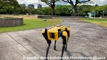 A robotic dog called Spot trots during a Honolulu Police Department demonstration to reporters Friday May 14, 2021. Police officials experimenting with the four-legged machines say they're just another tool, like drones or simpler wheeled robots, to keep emergency responders out of harm's way. (AP Photo/Jennifer Sinco Kelleher)