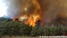 30.07.21 *** A forest fire burns near Marmaris, Turkey, July 30, 2021. REUTERS/Kenan Gurbuz