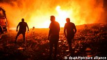 Feuerwehrleute und Dorfbewohner versuchen ein Feuer in der Provinz Antalya unter Kontrolle zu bringen. Im Zuge der Brände an der türkischen Mittelmeerküste und in weiteren Regionen sind mehrere Menschen gestorben. +++ dpa-Bildfunk +++