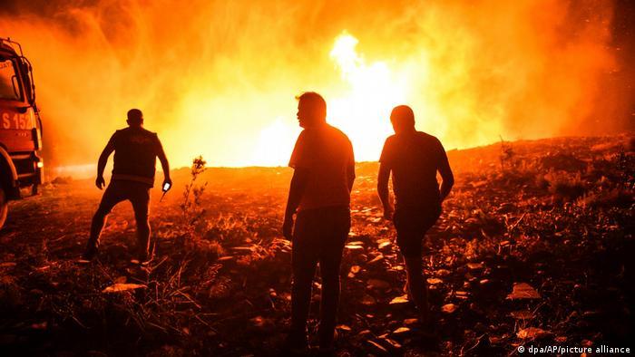 """Yangın alanları """"Afet Bölgesi"""" ilan edildi"""