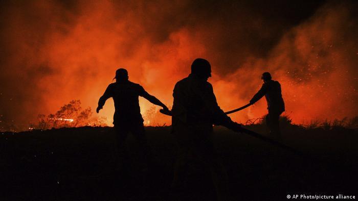 Лесные пожары близ Манавгата