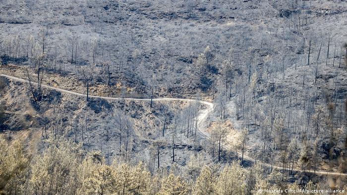 Türkei Waldbrände Antalya