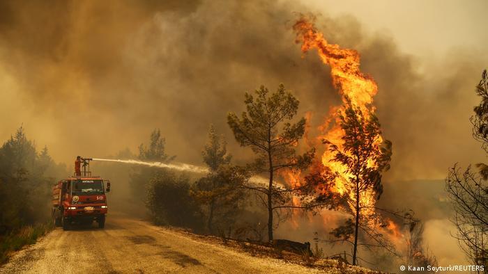 Лісова пожежа в Туреччині