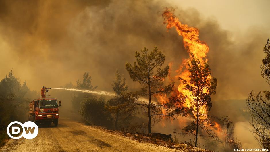 Turkey: Death toll rises as wildfires rage along coastal resorts
