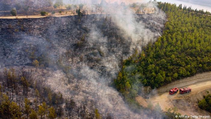 افزون بر تلفات جانی، خسارات شدیدی به طبیعت و محیط زیست ترکیه وارد شده و بخشهای وسیعی از جنگلها طعمه آتش شدهاند.