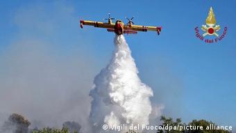 İtalya'daki orman yangınları güneyde çok etkili