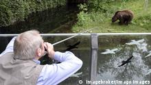 Datum: 23.05.2006 Bildnummer: 52939462 Copyright: imago/imagebroker Henning Wiesner (Direktor Tierpark Hellabrunn) schießt mit einem Blasrohr auf einen Braunbären - Tierpark Hellabrunn in München, Personen, Highlight; 2006, München, Braunbär, Bär, Wirtschaft, Betäubung,; , quer, Kbdig, Einzelbild, close, Aktion, People; Aufnahmedatum geschätzt Bildnummer 52939462 Date 23 05 2006 Copyright Imago imagebroker Henning Wiesner Director Zoo Hellabrunn shoots with a Blowpipe on a Brown bears Zoo Hellabrunn in Munich People Highlight 2006 Munich Brown bear Bear Economy Anaesthetic horizontal Kbdig Single Close Action shot Celebrities date estimated