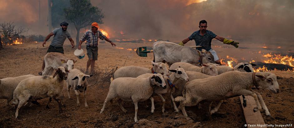 WS   Türkei Waldbrände Mugla