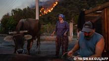 TOPSHOT - An old woman gathers cattle for a safe place due to wildfires on August 2, 2021 in Mugla, Marmaris district, as the European Union sent help to Turkey and volunteers joined firefighters in battling a week of violent blazes that have killed eight people. - Turkey's struggles against its deadliest wildfires in decades come as a blistering heatwave grips southeastern Europe creating tinderbox conditions that Greek officials blame squarely on climate change. The fires tearing through Turkey since July 28 have destroyed huge swathes of pristine forest and forced the evacuation of panicked tourists from seaside hotels. (Photo by Yasin AKGUL / AFP)