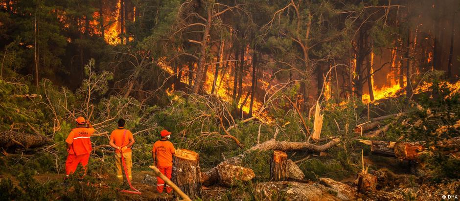 تركيا واليونان تواجهان حرائق غابات تخرج عن السيطرة ، الصورة من حرائق تركيا.