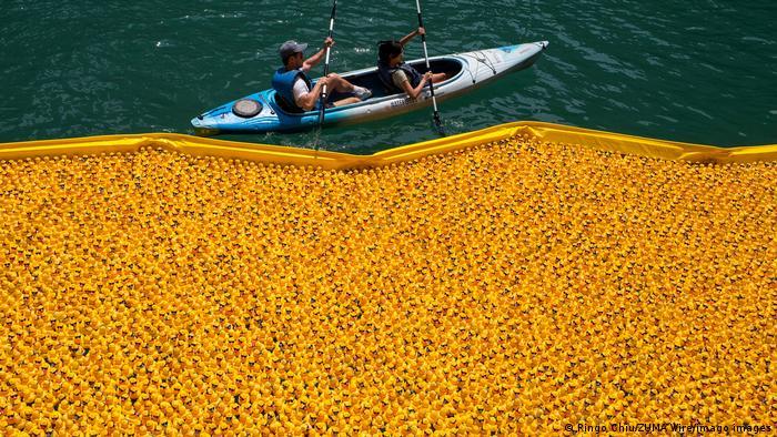 """Više od 70.000 gumenih patkica bačeno je u reku Čikago u okviru akcije """"Ducky Derby"""" na kojoj su se prikupljala sredstva za organizaciju Specijalne Olimpijade u Ilinoisu. Svaka patkica bila je na prodaju i koštala je 5 dolara. Na taj način prikupljeno je 310.340 dolara."""
