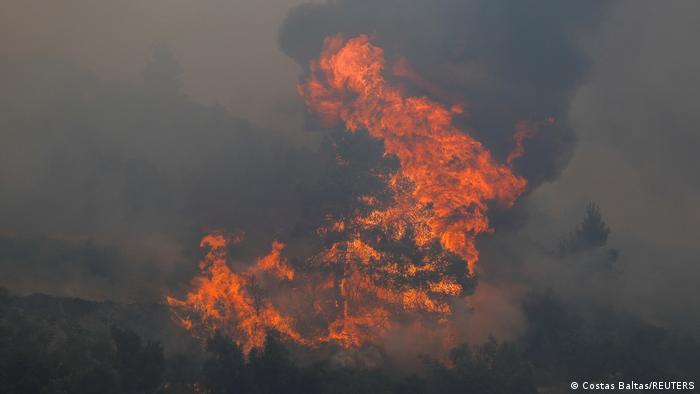 Лесной пожар рядом с Афинами