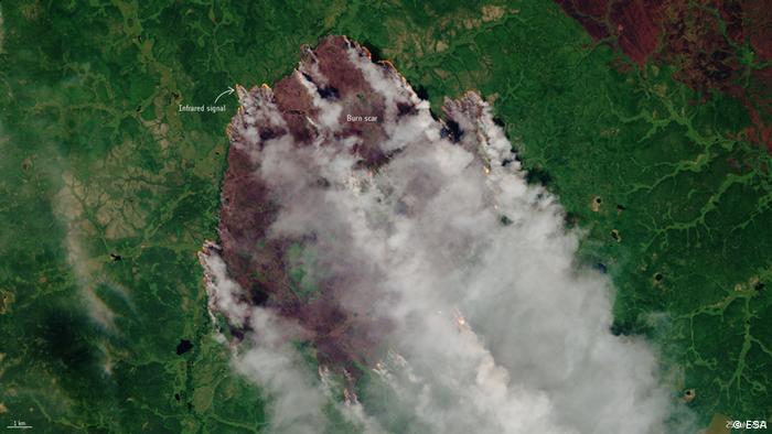 Russland I Waldbrände in Sakha-Yakuti