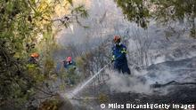 ATHENS, GREECE - AUGUST 7: A firefighter battles wild fire in Thrakomacedones area, in northern Athens, on August 7, 2021 in Athens, Greece. People were evacuated from their homes after a wildfire reached residential areas of northern Athens as record temperatures were recorded at 42 degrees Celsius (107.6 Fahrenheit). (Photo by Milos Bicanski/Getty Images)