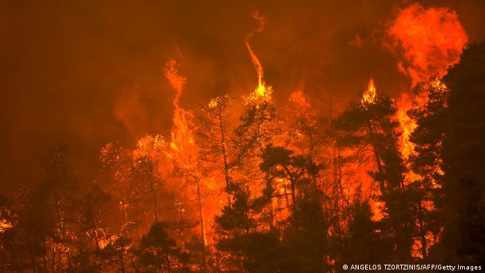 Griechenland | Insel Euböa: Feuer in Gouves