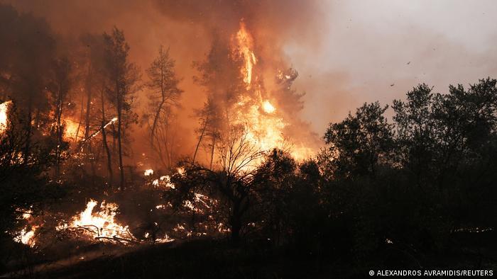 Global wildfires: Greek mayor optimistic major Evia hub will be saved    News   DW   10.08.2021