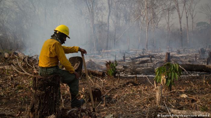 الحرائق في أمريكا اللاتينية