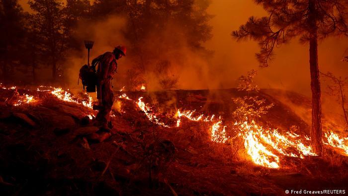 USA |Waldbrände in Kalifornien