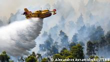A firefighting airplane makes a water drop as a wildfire burns near the village of Ellinika, on the island of Evia, Greece, August 8, 2021. REUTERS/Alexandros Avramidis TPX IMAGES OF THE DAY