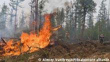 18.07.2021, Russland, Magaras: Freiwillige und Mitarbeiter des Yakutlesresurs löschen einen Waldbrand außerhalb des Dorfes Magaras 87 Km westlich von Jakustk, der Hauptstadt der Republik Sacha. In weiten Teilen Russlands kam es aufgrund von ungewöhnlich hohen Temperaturen und der Vernachlässigung von Brandschutzvorschriften zu Waldbränden, wobei die Region Sacha-Jakutien im Nordosten Sibiriens am stärksten betroffen ist. Foto: Alexey Vasilyev/AP/dpa +++ dpa-Bildfunk +++