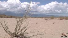DW Sendung Fokus Europa Spanien Dürre Plantagen