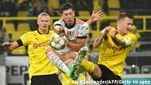 (L to r) Dortmund's Norwegian forward Erling Braut Haaland, Bayern Munich's Polish forward Robert Lewandowski and Dortmund's German forward Marco Reus vie for the ball during the German Supercup football match BVB Borussia Dortmund vs FC Bayern Munich in Dortmund, on August 17, 2021. - DFL REGULATIONS PROHIBIT ANY USE OF PHOTOGRAPHS AS IMAGE SEQUENCES AND/OR QUASI-VIDEO (Photo by Ina Fassbender / AFP) / DFL REGULATIONS PROHIBIT ANY USE OF PHOTOGRAPHS AS IMAGE SEQUENCES AND/OR QUASI-VIDEO (Photo by INA FASSBENDER/AFP via Getty Images)