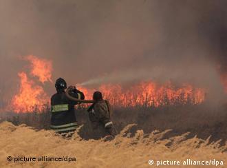 Лесные пожары - одна из главных тем немецких СМИ