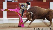 epa03362104 Matador Javier Castano fights a bull during the sixth bullfighting day of Begona Fair at Biblio bullring in Gijon, Asturias region, northern Spain, 14 August 2012. EPA/ALBERTO MORANTE ++ +++ dpa-Bildfunk +++
