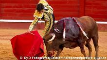Andres Roca Rey beim Stierkampf in der Stierkampfarena von Aranjuez. Aranjuez, 30.05.2021
