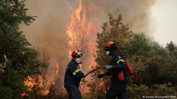 Лесной пожар в Греции, лето 2021 года