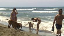 Videostill aus einer WDR-Übernahme. Fokus Europa Italien Hundestrand