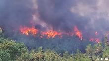Nur für die türkische Redaktion! *** Waldbrände in der westtürkischen Stadt Çanakkale