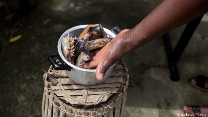 A hand reaches into a pot of river shrimp
