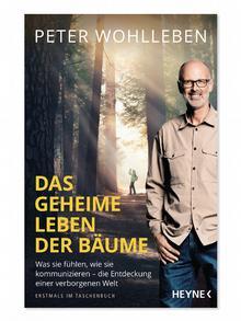 Книга Петера Вольлебена Тайная жизнь деревьев