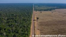 In this Nov. 25, 2019 photo, highway BR-163 stretches between the Tapajos National Forest, left, and a soy field in Belterra, Para state, Brazil. Carved through jungle during Brazil's military dictatorship in the 1970s, this highway and BR-230, known as the Trans-Amazon, were built to bend nature to man's will in the vast hinterland. Four decades later, there's development taking shape, but also worsening deforestation. (AP Photo/Leo Correa)