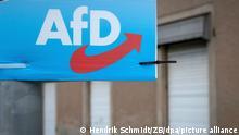 Ein Wahlplakat der AfD Kandidaten für den Landtag hängt am Ortsausgang von Eisleben. Die Wahl zum neuen Landtag in Sachsen-Anhalt ist die letzte Landtagswahl vor der Bundestagswahl im September 2021.