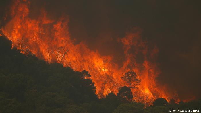 A wildfire burns on Sierra Bermeja mountain in Estepona, Spain