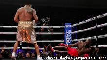 Former MMA star Vitor Belfort, left, knocks down former heavyweight champ Evander Holyfield during the first round of a boxing match Saturday, Sept. 11, 2021, in Hollywood, Fla. (AP Photo/Rebecca Blackwell)