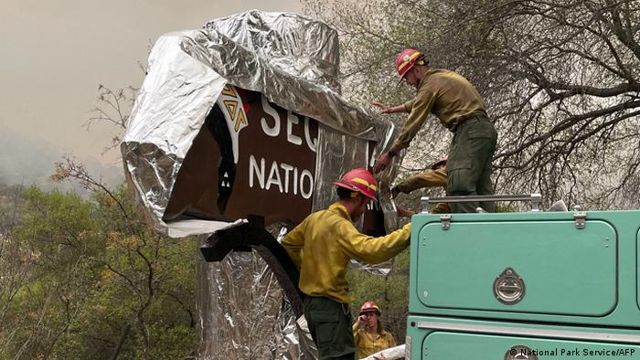 firefighters wrap the historic Sequoia National Park entrance sign with aluminum fire-proof blankets