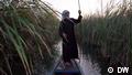 Man on boat in a marsh