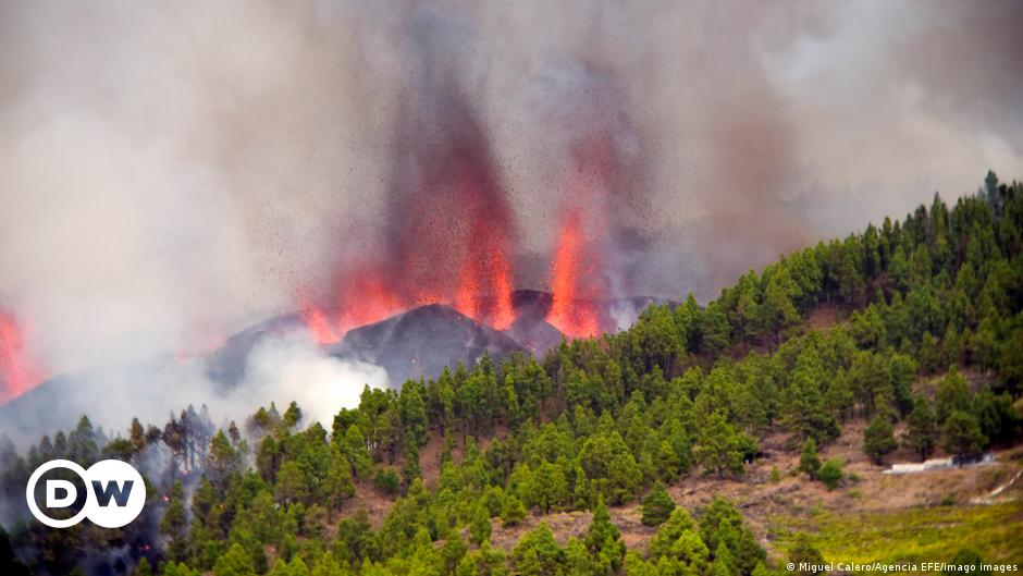 Canary Islands: Volcano erupts on La Palma destroying several homes