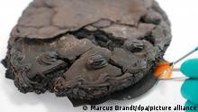 کیکی که پس از ۷۹ سال باستانشناسان آن را پیدا کردند