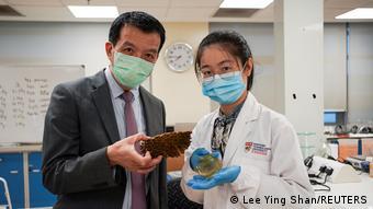 Wissenschaftler in Singapur verwandeln Fruchtreste in antibakterielle Bandagen.