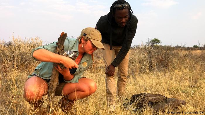 A woman and a man stand over a pangolin burrow