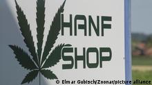 hemp store sign for buying organic products made from cannabis sativa plant